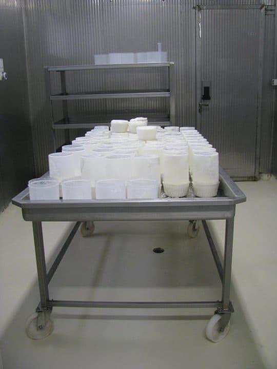 Azienda Agricola Biologica Le Ramate